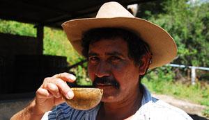 mexiko pkw dichte